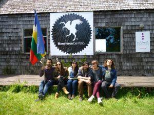Colectivo Mamíferos de Patio - 12.2012 Talleres en Residencia