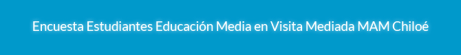 Encuesta Estudiantes Educación Media y Superior para visita mediada